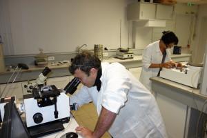 Laboratoire R&D